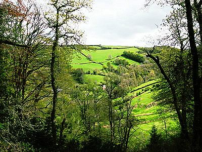 View from the Coleridge Way