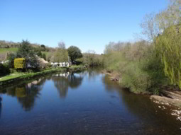 River Exe at Bickleigh